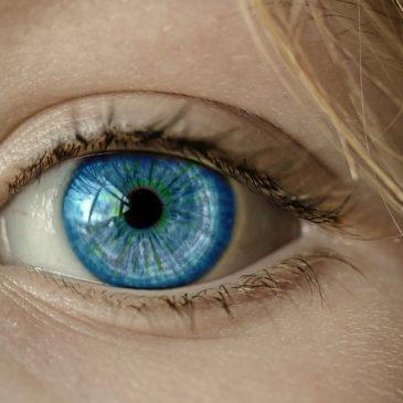 Euphrasia Augentropfen bei Augenschmerzen.